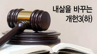 """""""내게 헌법 한줄권 준다면""""..성소수자·반려동물·노인행복권 '개헌제안' 봇물"""